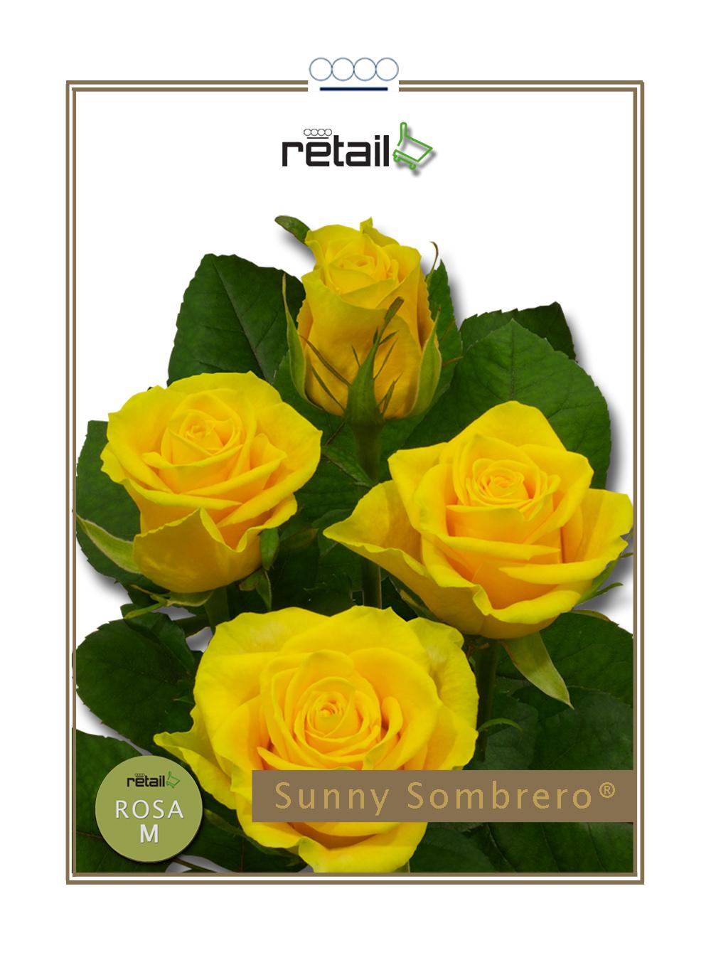 Sunny Sombrero®