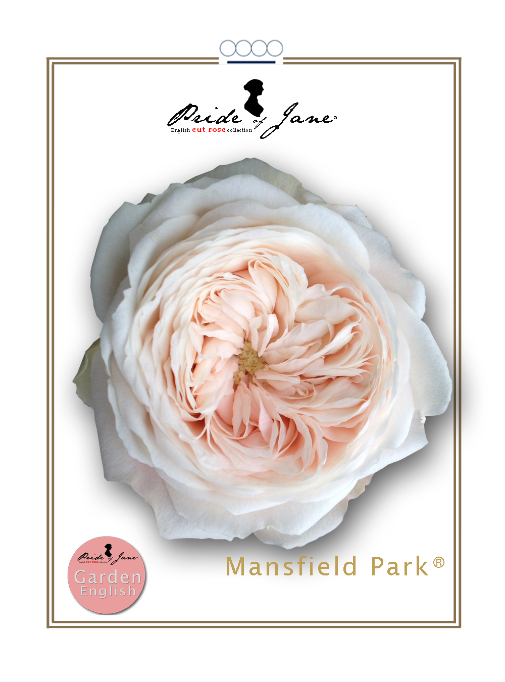 Mansfield Park®