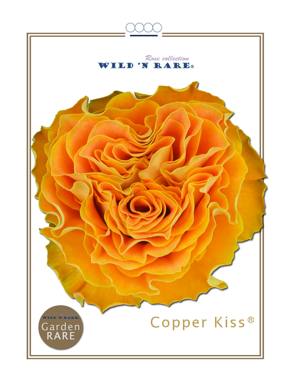 Copper Kiss®