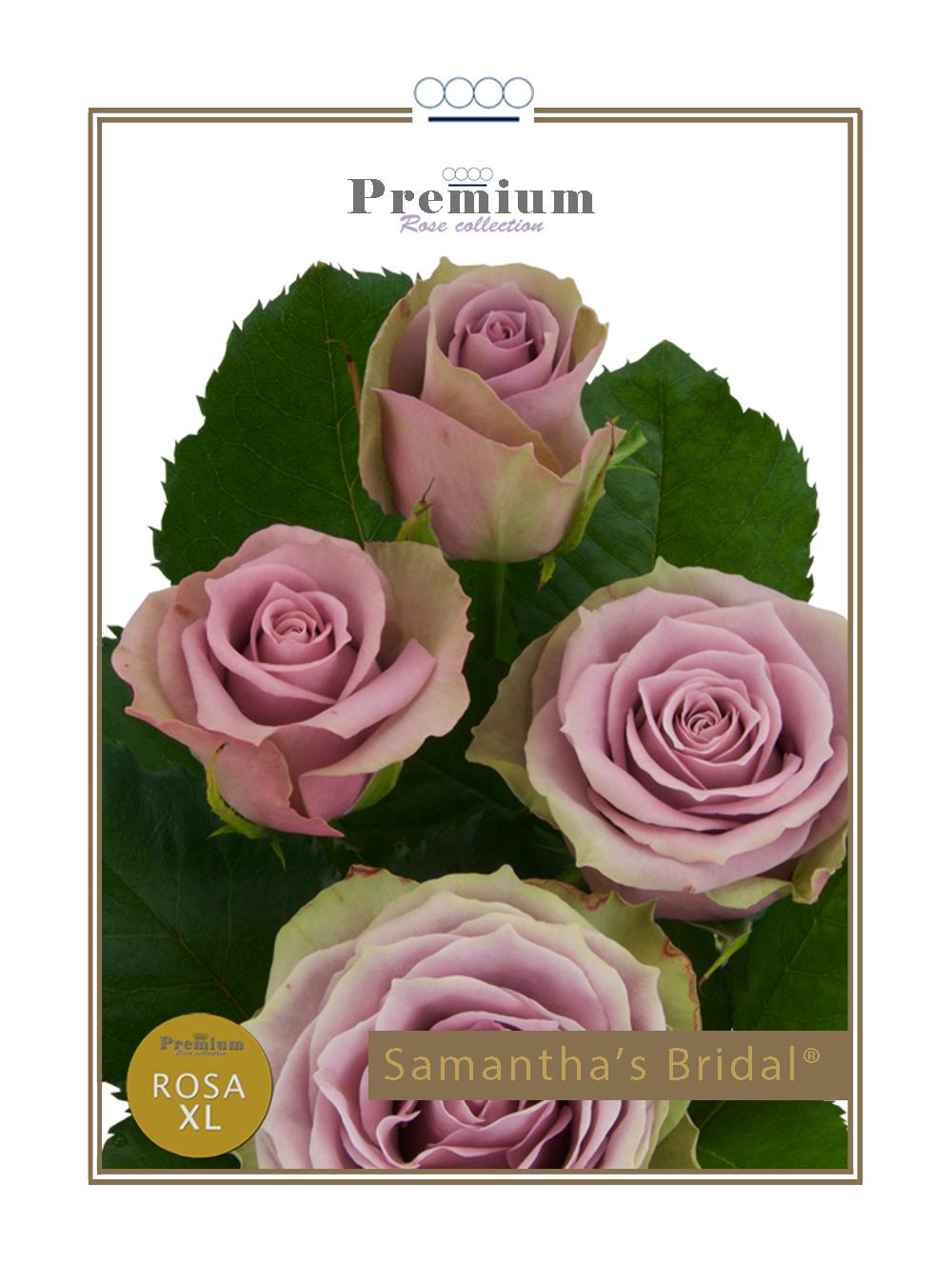 Samantha's Bridal®
