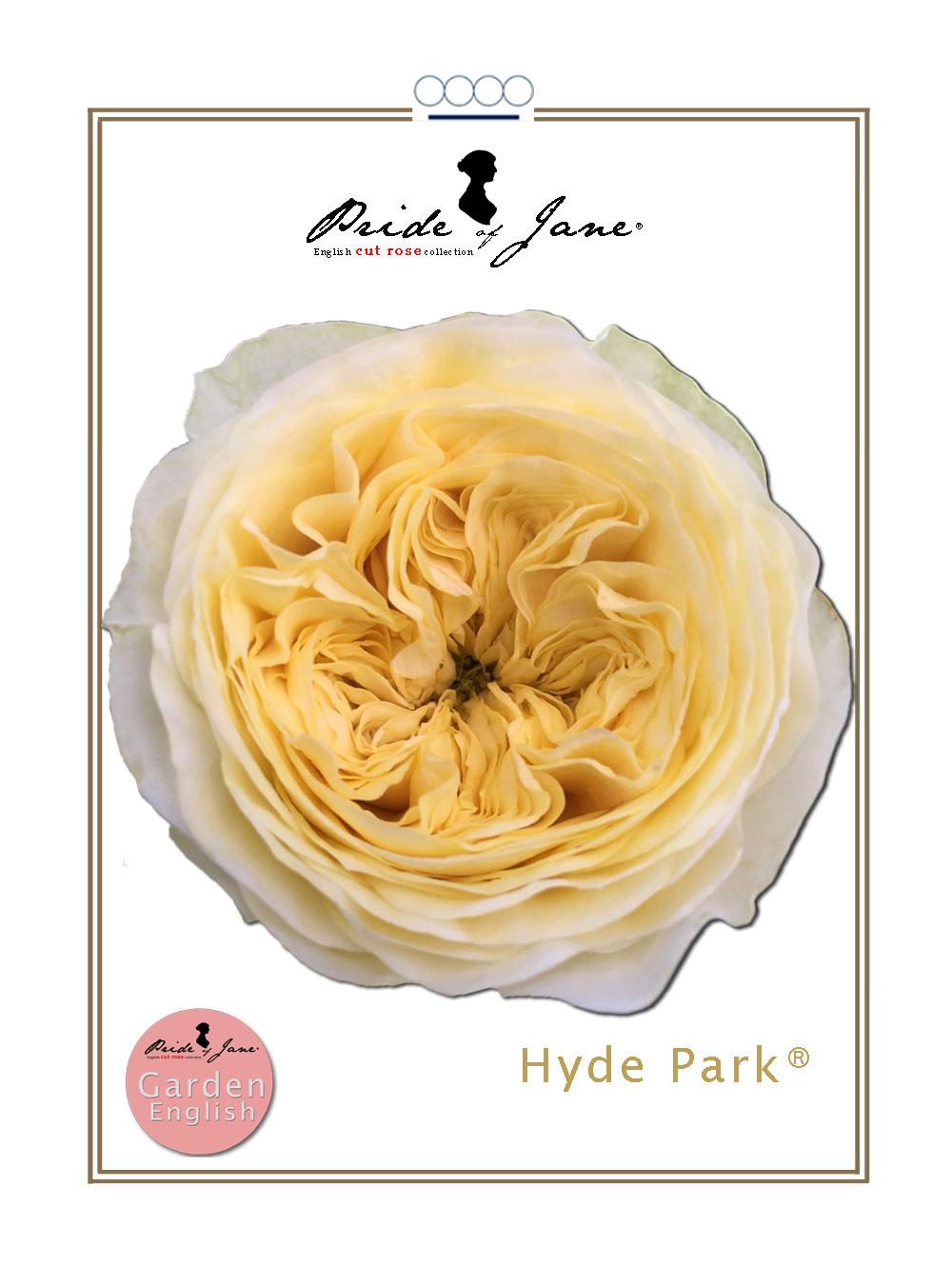 Hydepark®