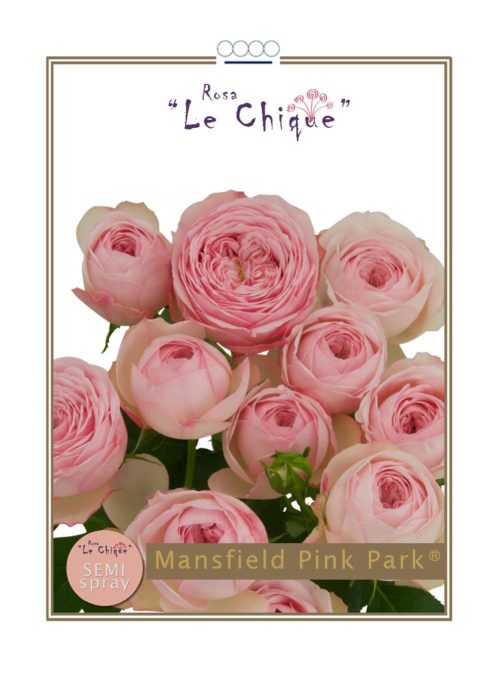 Mansfield Pink Park®