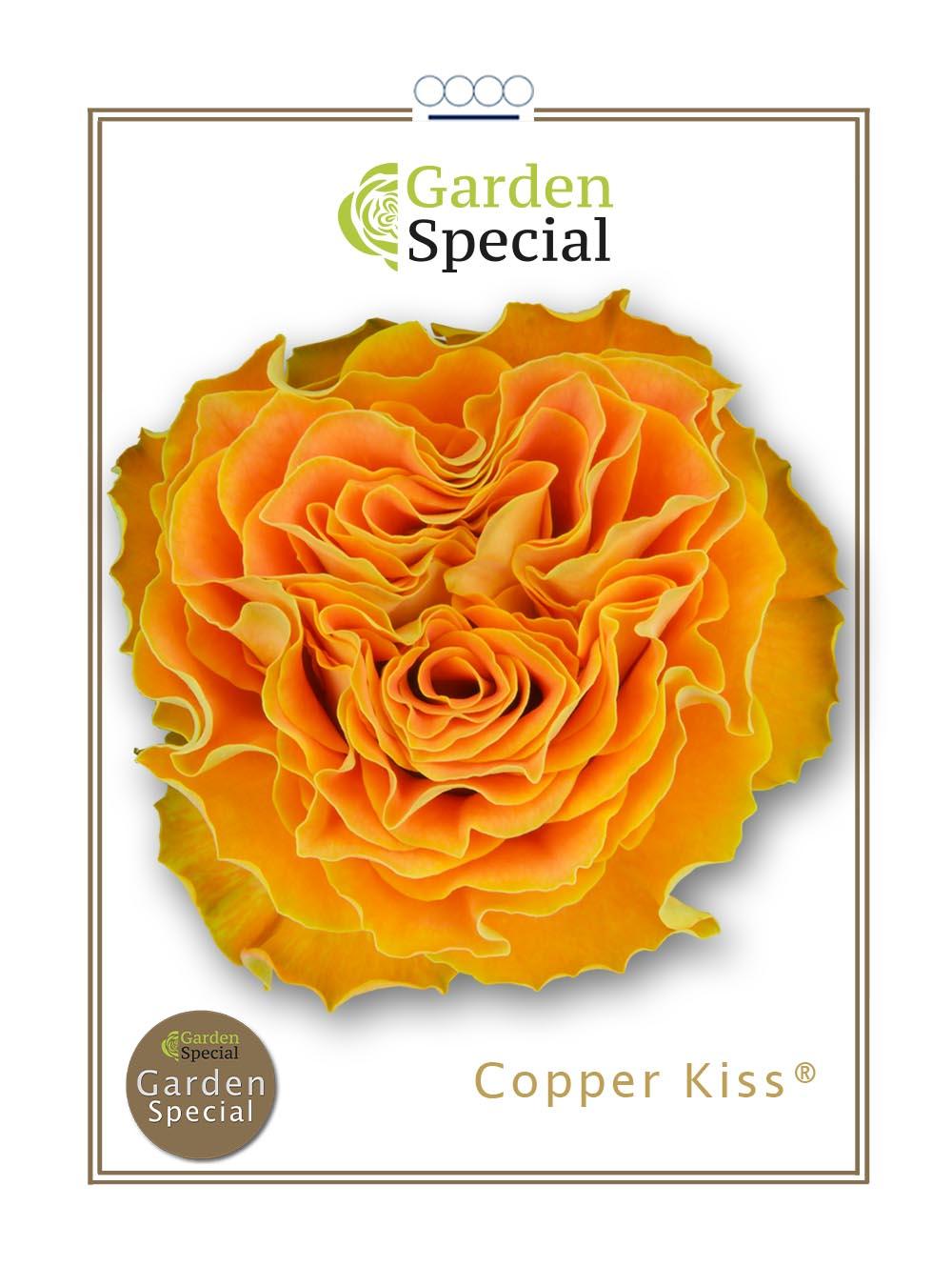Copper Kiss®