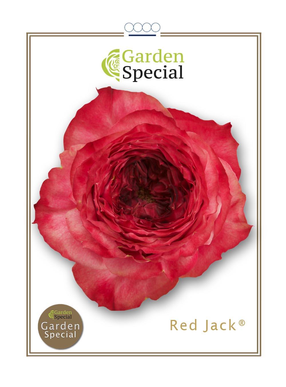 Red Jack®