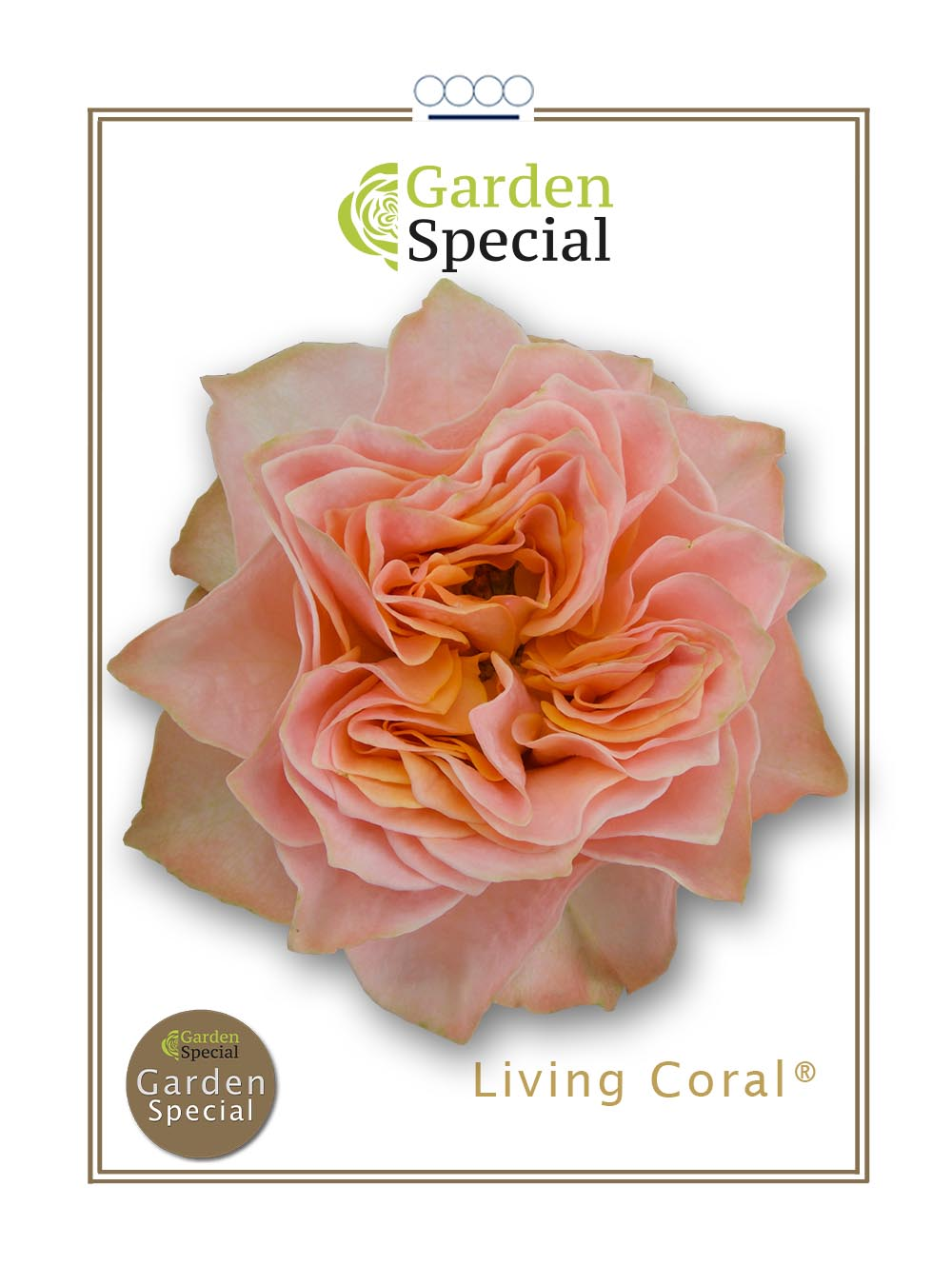 Living Coral®