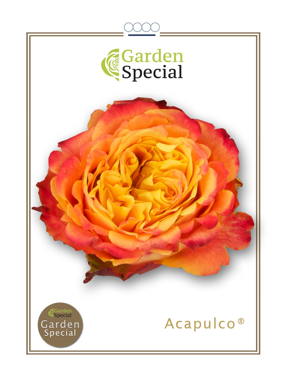 Acapulco®